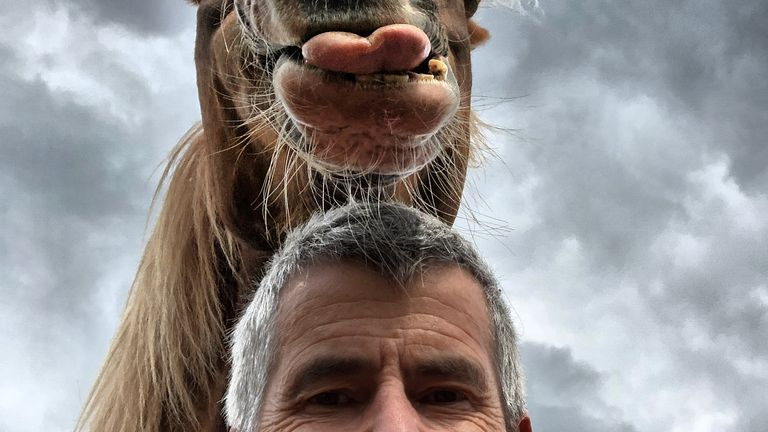 Peter von Sheen/Mars Petcare Comedy Pet Photo Awards 2020
