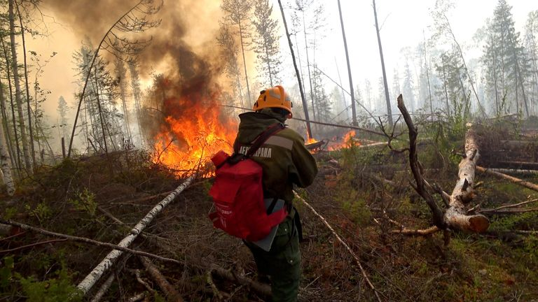Forest fires in Siberia have contributed to the melting of ice in the Arctic