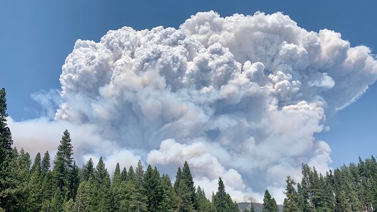 The fire has ravaged more than 36,000 acres Pic: Sierra National Forest/Twitter