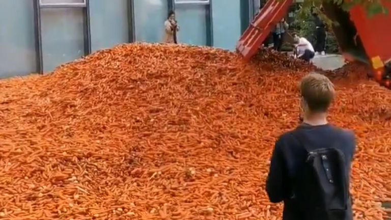 Handout photo courtesy of Matt Colquhoun 29 tonnes of carrots being dumped outside Goldsmiths College - part of the University of London - for an art installation.