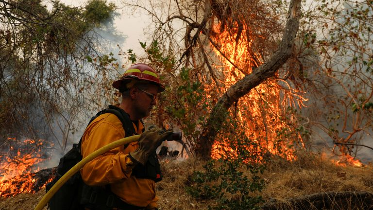 A firefighter works to extinguish the Bobcat Fire near Arcadia, California