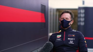 Horner on Red Bull's engine and driver future