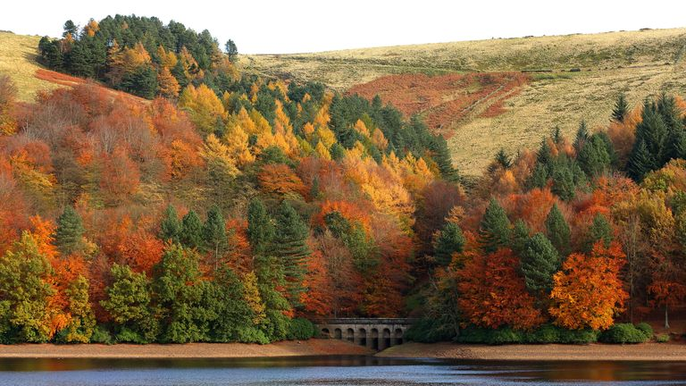 Trees on Derwent Reservoir in the Peak District hold on to their Autumn colours as weather experts predict a cold spell of weather across the UK in the coming weeks.