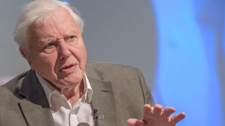 Sir David Attenborough speaks at the UK Climate Assembly in January, 2020