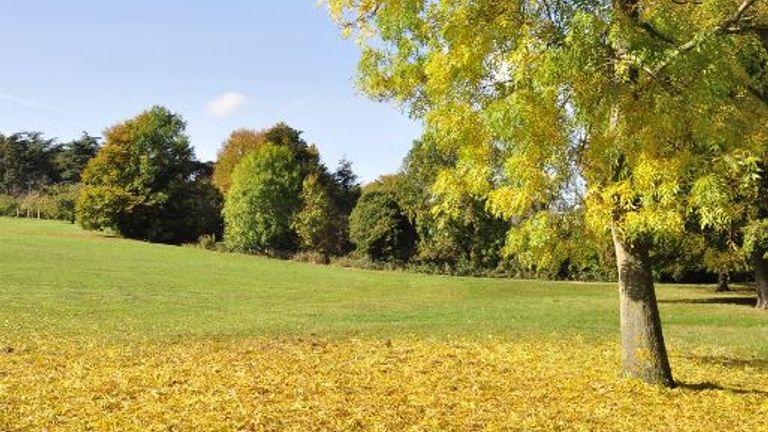 Stanmer Park in Brighton