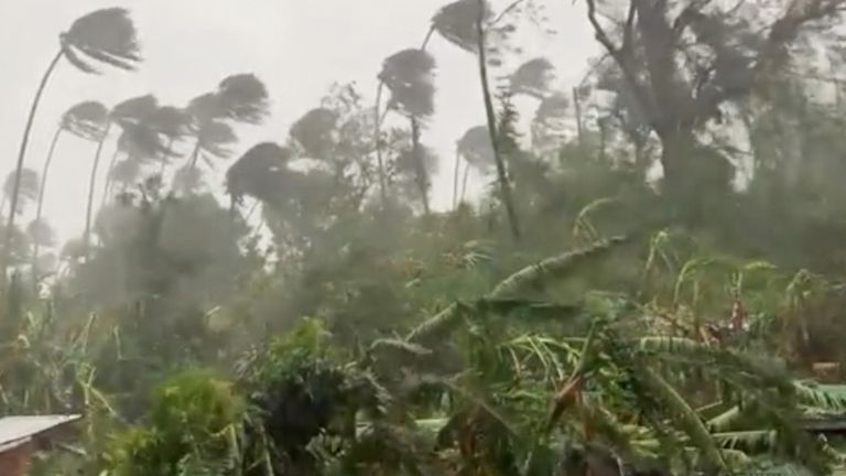 Heavy rain in a forested area, wind blowing trees in Mindoro Oriental, Philippines October 26, 2020 in this still image obtained from video. Erik De Castro via REUTERS ATTENTION EDITORS - THIS IMAGE HAS BEEN SUPPLIED BY A THIRD PARTY. MANDATORY CREDIT. MUST CREDIT ERIK DE CAST