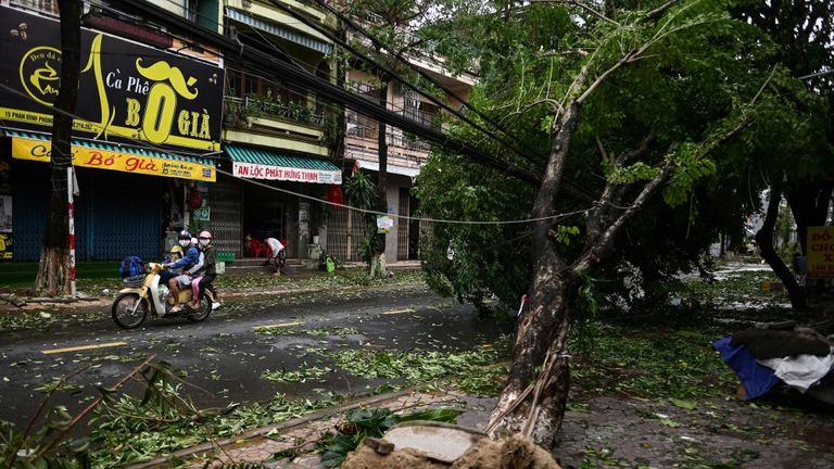 A family rides on a scooter past uprooted trees in central Vietnam's Quang Ngai province