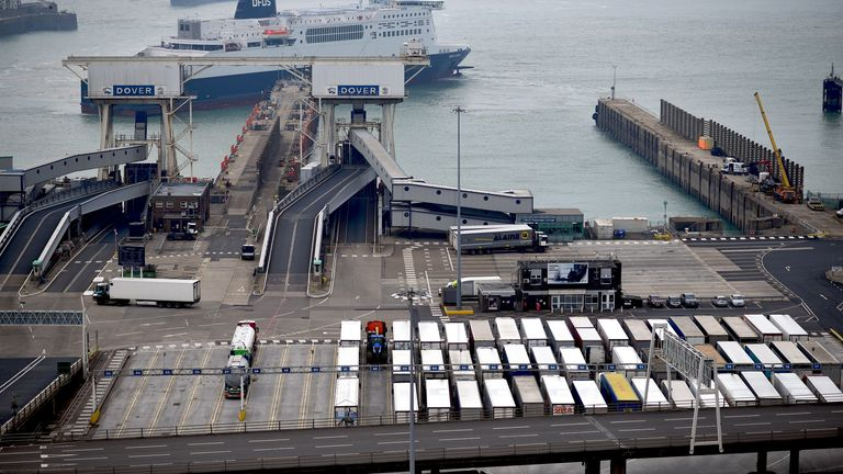 "Freight lorries wait on the quayside to board a ferry, as a DFDS ferry arrives at the Port of Dover, in Dover on the south coast of England on June 12, 2020. - Britain will apply ""light-touch"" border checks on goods from the European Union when the Brexit transition period ends this year so as to help firms hit by the coronavirus crisis"
