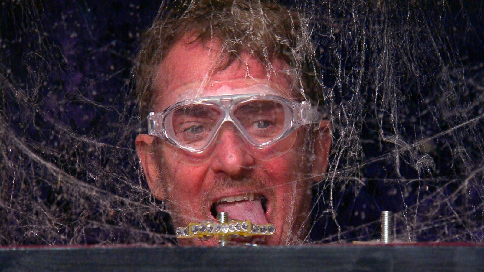 I'm A Celebrity 'investigated by police' over bushtucker trials - but show defends its use of bugs