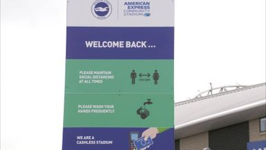 Brighton CEO hopeful of fan increase