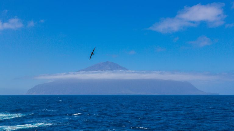 Tristan da Cunha, the most remote island, South Atlantic Ocean - British overseas territory. Volcano covered with clouds and seagull, cormorant or gannet on foreground.