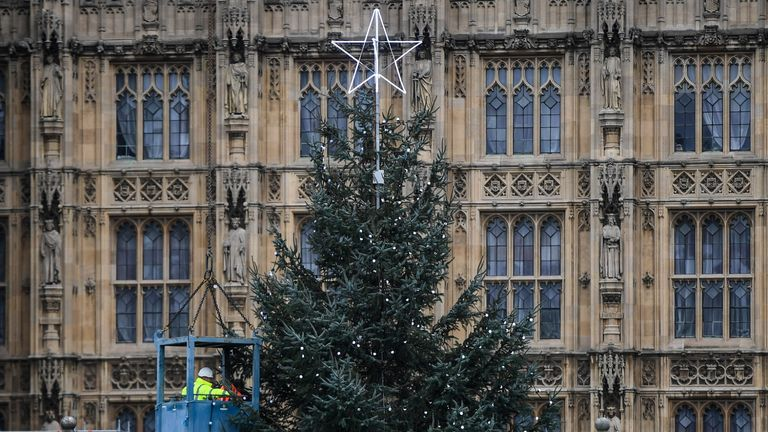 LONDON, ENGLAND - NOVEMBER 21: Workers are seen placing lights on a Christmas tree outside the Houses of Parliament on November 21, 2020 in London, England. The 43ft Sitka spruce tree was felled on Tuesday in the Kilder forest in Northumberland, England before being transported to Parliament. (Photo by Peter Summers/Getty Images)