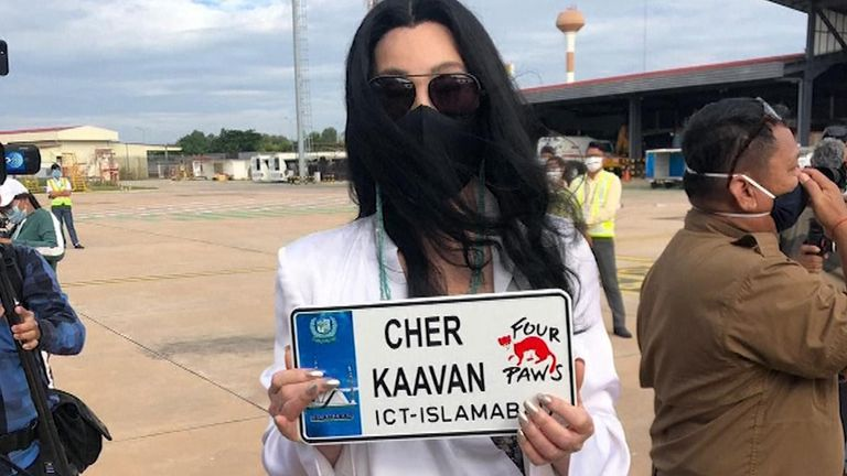 Cher on hand to greet Pakistan's lonely elephant upon arrival in Cambodia