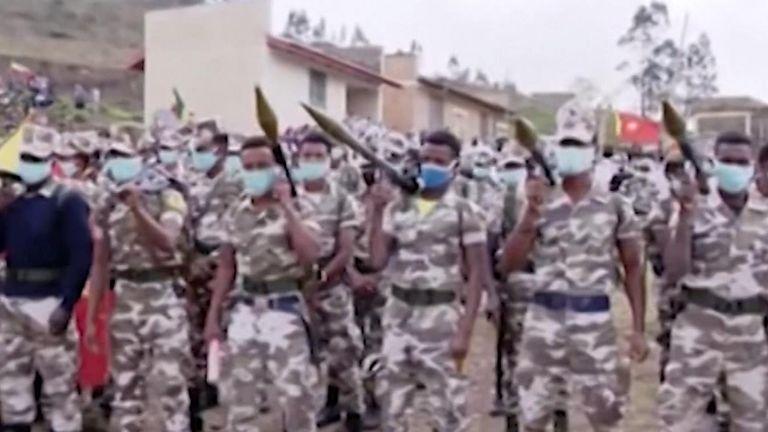 القوات الحكومية في تيغراي