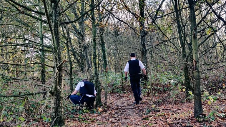 Police searched woodland in a London park for weapons
