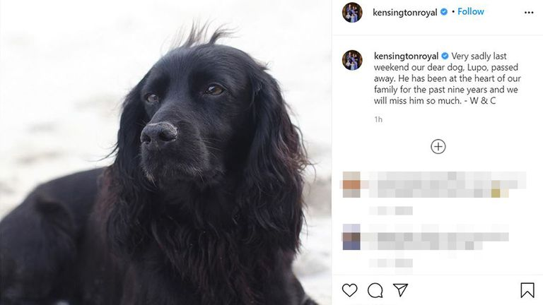 Screengrab from the official Instagram account of the Duke and Duchess of Cambridge of the announcement of the death of their dog, Lupo