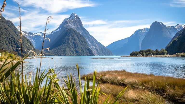 Tourism New Zealand's slogan is '100% pure New Zealand' - something Mr Nash said tourists do not always live up to