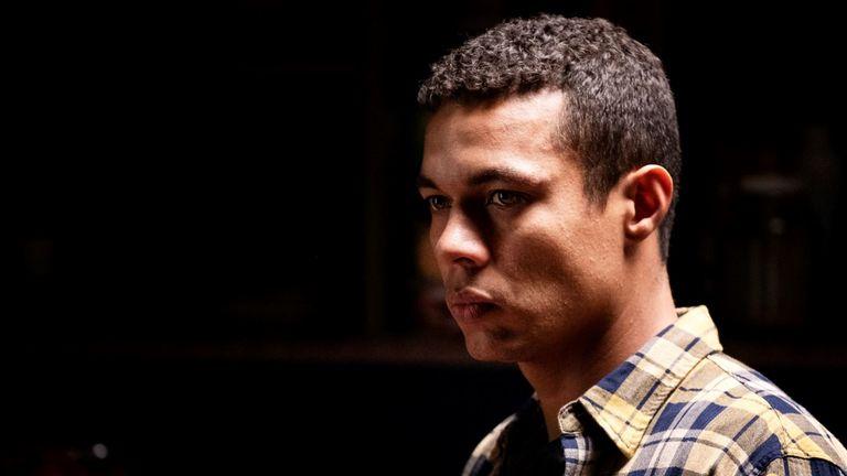 Ismael Cruz Cordova as Fernando Alves