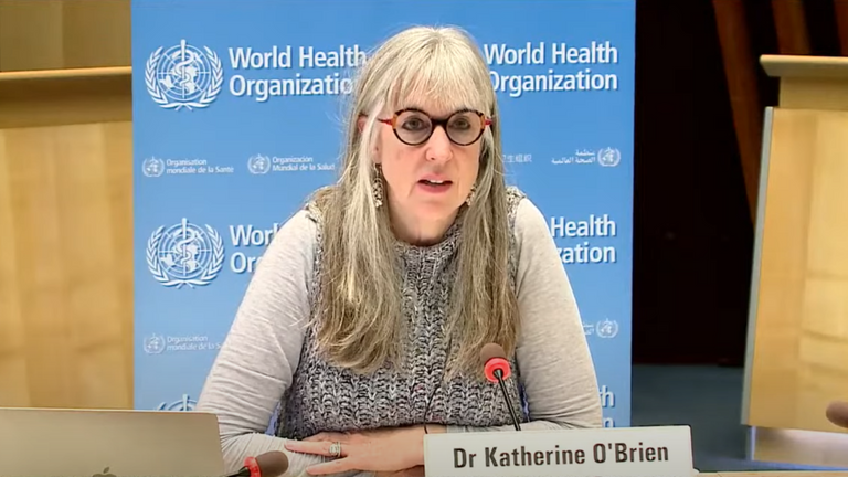 "Screengrab of Katherine O'Brien from WHO media briefing where she said ""more than a press release"" is needed from the Oxford/AstraZeneca vaccine trial"