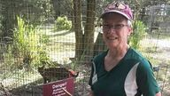 Candy Causer was the volunteer injured. Pic: Big Cat Rescue