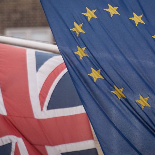 The Brexit transition is ending - but we still don't know the destination of our journey