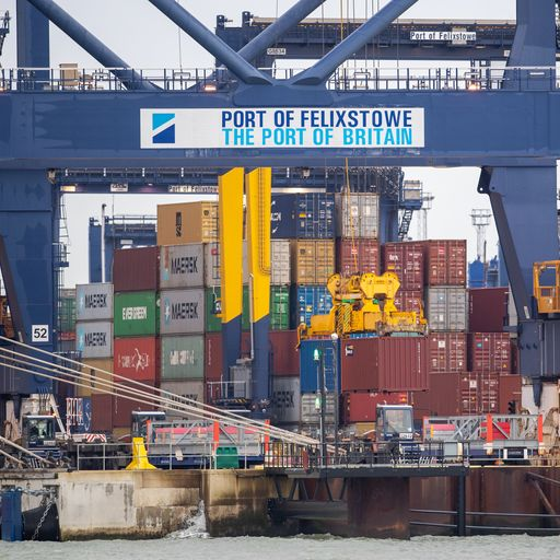 HGV driver crisis forces cargo ships to divert from UK due to container backlog