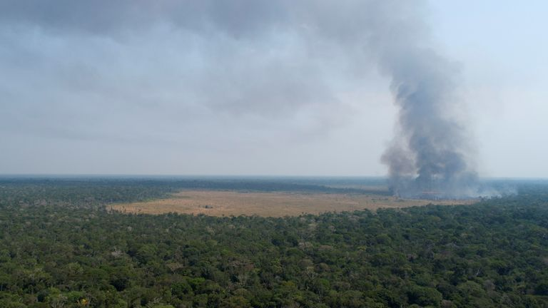 An aerial view shows smoke rising over a deforested plot of the Amazon jungle in Porto Velho, Rondonia State, Brazil, August 27, 2019. Picture taken with a drone. REUTERS/Ueslei Marcelino