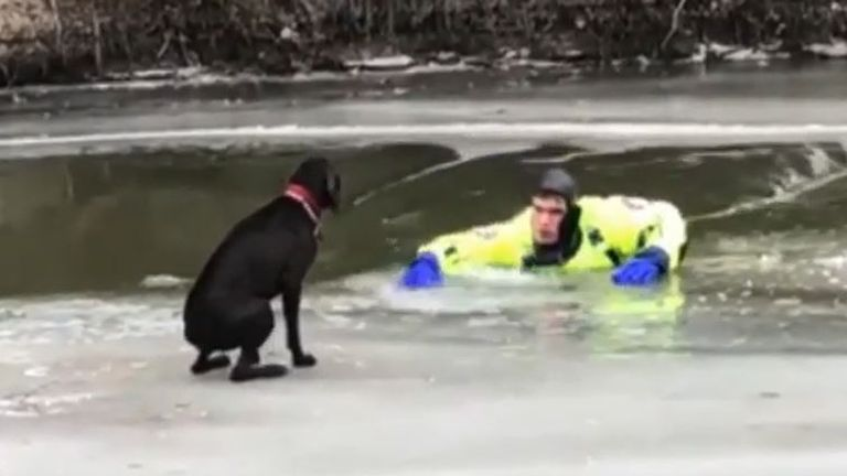 Dog is rescued from drifting ice in North Dakota