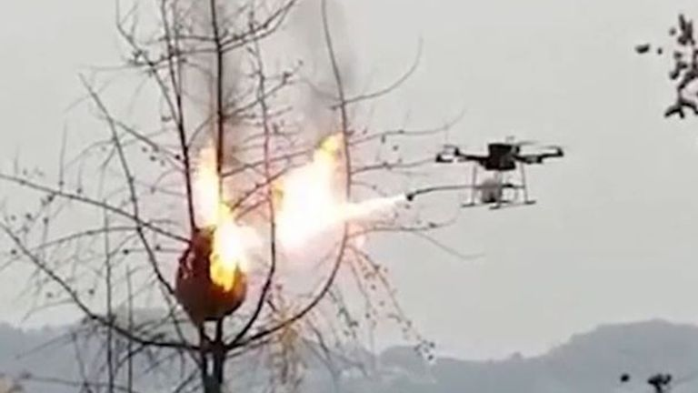 Flamethrower on a drone incinerates a wasp nest