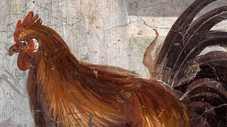 A fresco on an ancient counter depicting a rooster that was uncovered during excavations in Pompeii, Italy, is seen in this handout picture released December 26, 2020. Pompeii Archaeological Park/Ministry of Cultural Heritage and Activities and Tourism