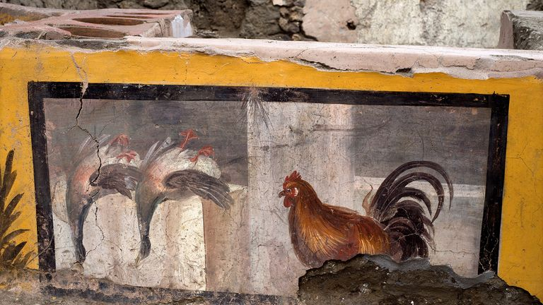 A fresco depicting two ducks and a rooster on an ancient counter discovered during excavations in Pompeii, Italy, is seen in this handout picture released December 26, 2020. Pompeii Archaeological Park/Ministry of Cultural Heritage and Activities and Tourism