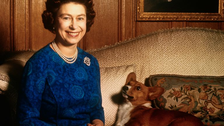 The Queen has owned 30 corgis since her reign