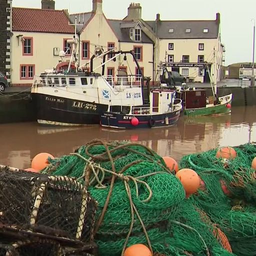 Seafood firms 'only have weeks to survive' - as environment secretary admits 'teething problems'