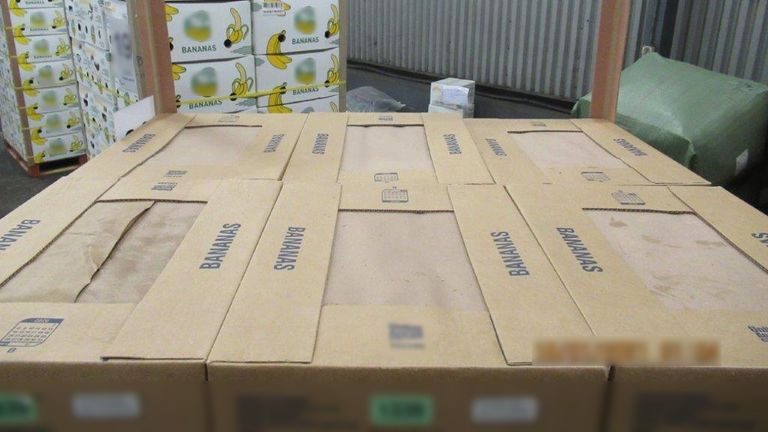 £76 million of cocaine hidden in bananas seized at Southampton