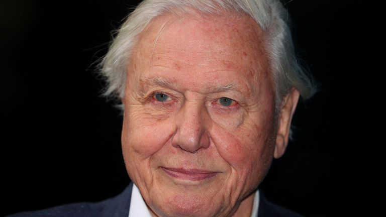 Broadcaster and film maker David Attenborough attends the premiere of Blue Planet II at the British Film Institute in London in 2017
