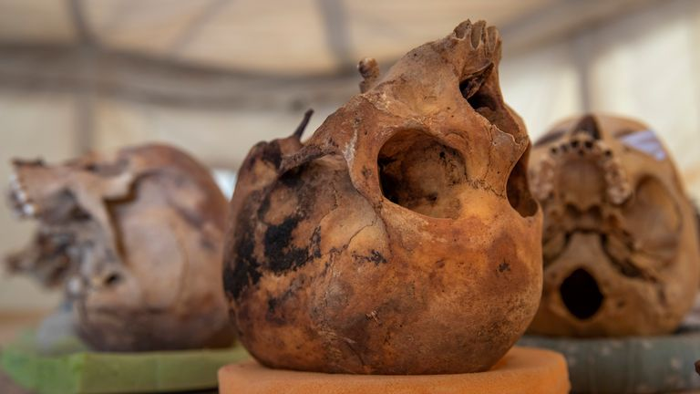 A trove of ancient skulls are on display that Egyptian archaeologist Zahi Hawass and his team unearthed in a vast necropolis, in Saqqara, south of Cairo, Egypt, Sunday, Jan. 17, 2021. (AP Photo/Nariman El-Mofty)
