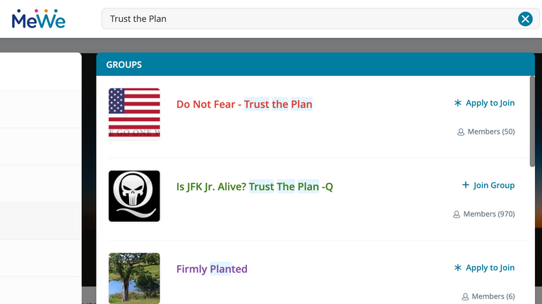 Several MeWe groups use the QAnon catchphrase 'Trust the Plan'