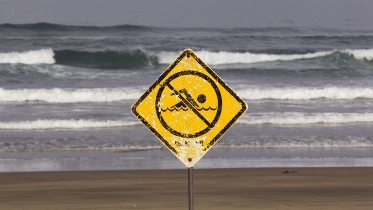 A no swimming sign is displayed at Muriwai Beach near Auckland, New Zealand, Thursday, Feb. 28, 2013