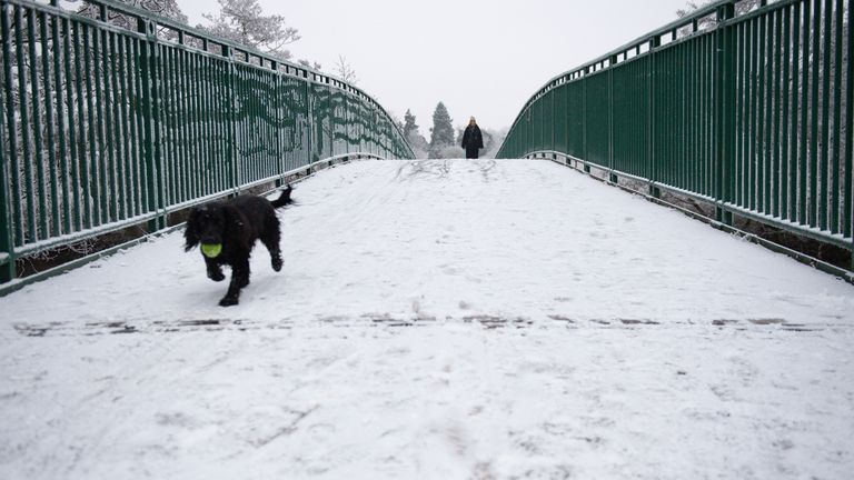 A dog walker in the snow-covered St Nicholas' Park, in Warwick.