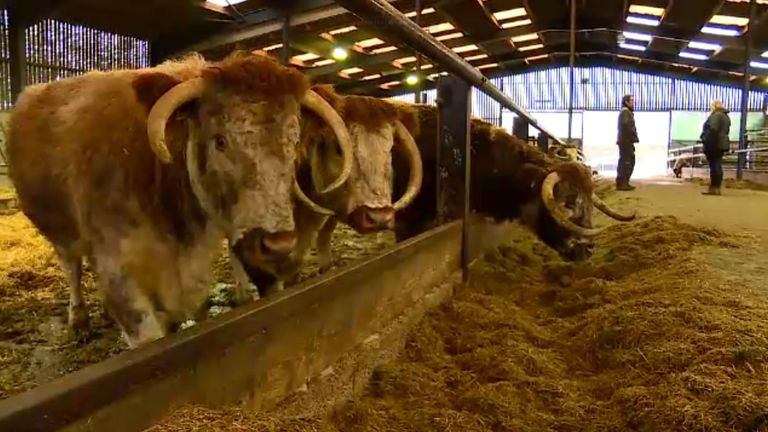 6.3% of UK emissions comes from methane and waste produced by livestock