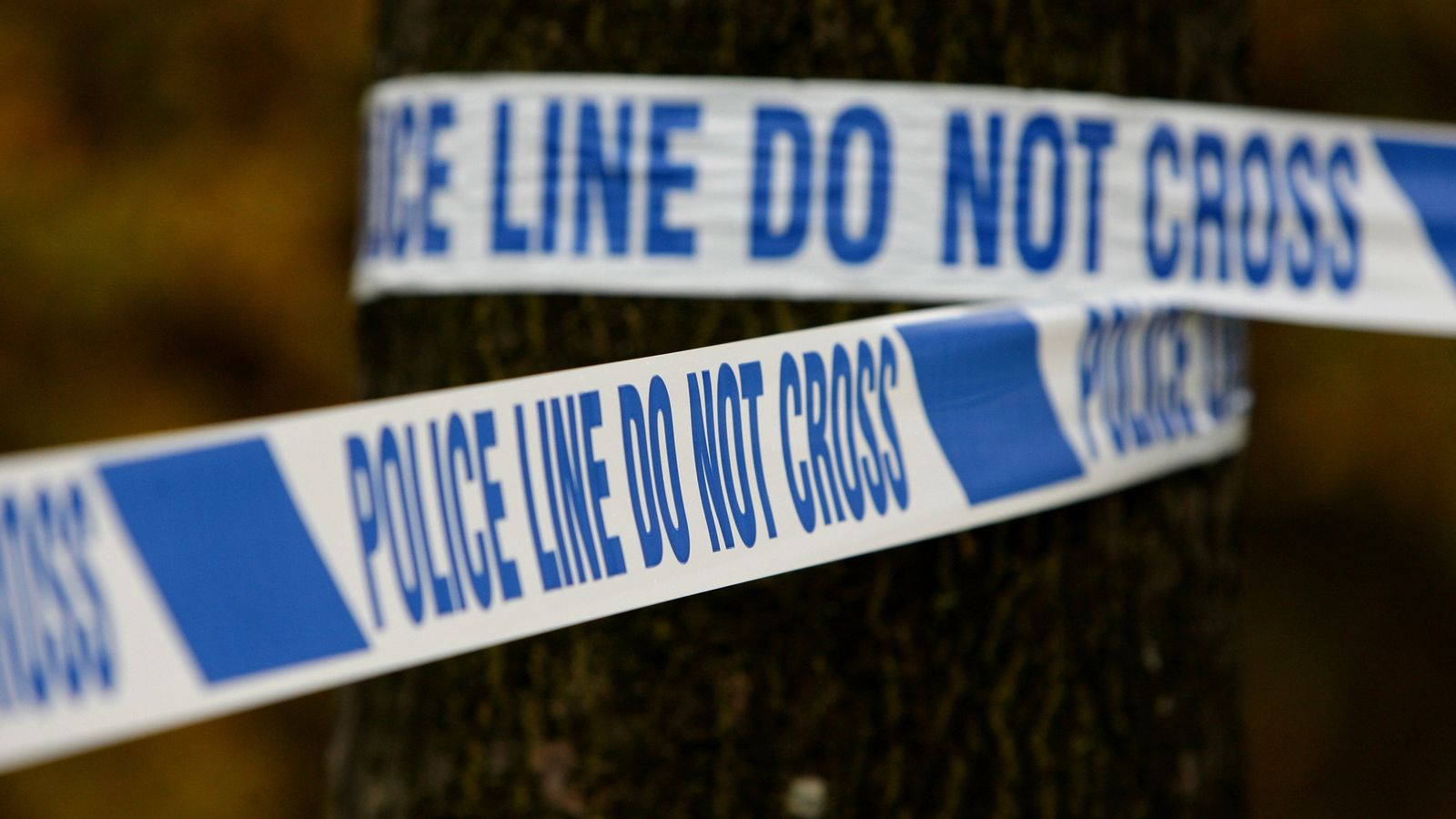 Hampshire: Man, 52, arrested after two bodies found at property in Basingstoke