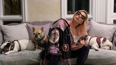 Lady Gaga with her dogs in 2020. Pic: @ladygaga