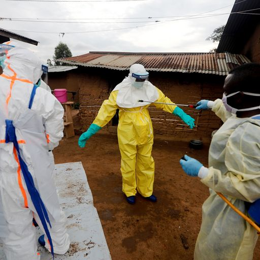 Why the deadly disease Ebola keeps coming back