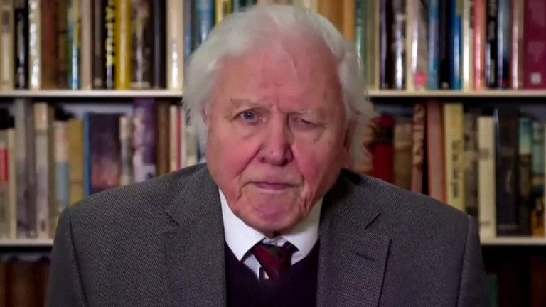 Attenborough, 94, addressed the UN panel on climate-related risks to international peace and security.