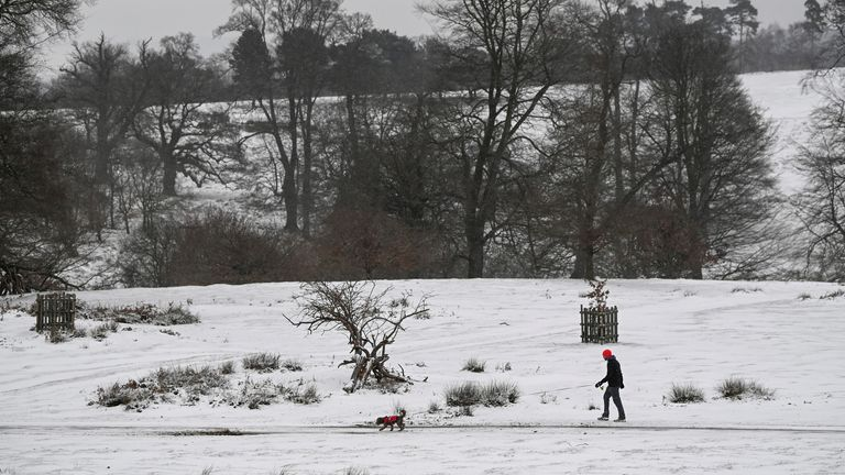 A person walks a dog during snowfall in Sevenoaks