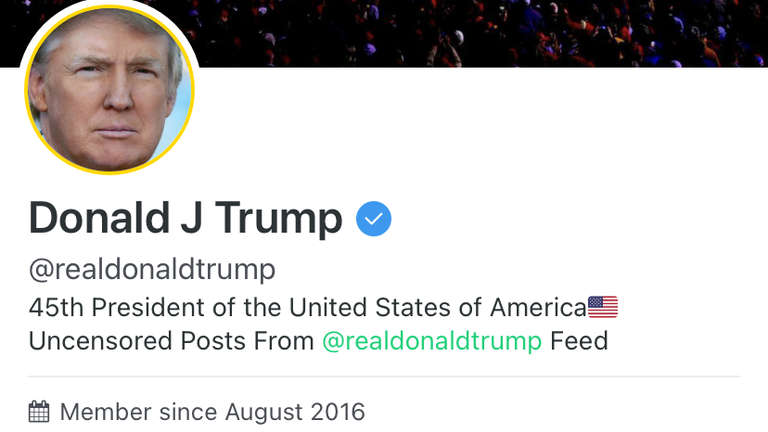 Donald Trump signed up to Gab in 2016 but did not use it much until he was thrown off Twitter and Facebook