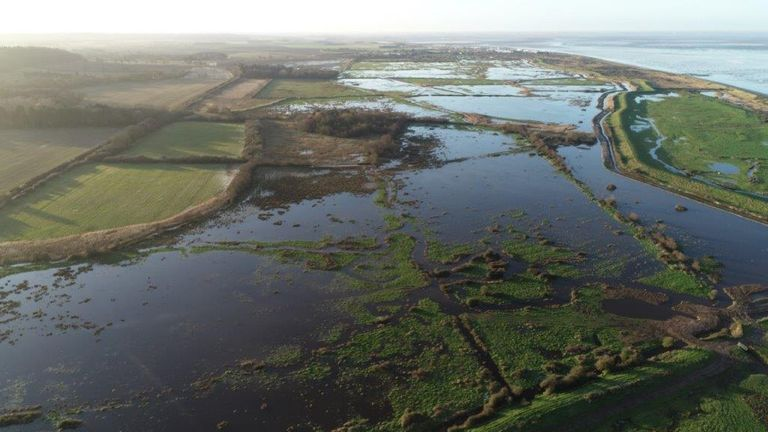 These fields in Norfolk have been rewilded to protect freshwater species