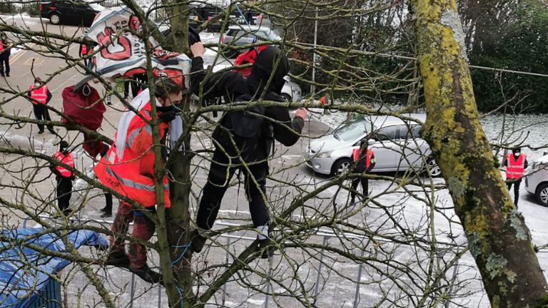 Activists are trying to stop seven mature trees from being cut down at Highbury Corner, Islington. PC: @bearwitness2019