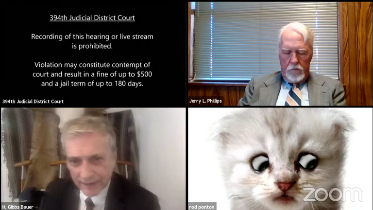 Lawyer turns on cat filter by mistake in court hearing in Texas, USA