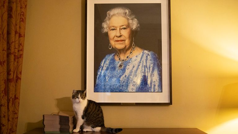 09/02/2021. London, United Kingdom. Larry the Cat sits under a portrait of Queen Elizabeth II by David Bailey inside 10 Downing Street. Pic: Simon Dawson/ No 10